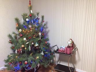 Новогодняя елка в зоне АТО